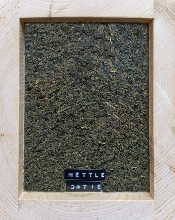 <h1>Ortie – 100g</h1>