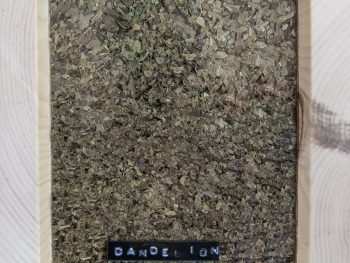 <h1>Dandelion leaves -100g</h1>